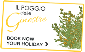 Book your holiday in Umbria Italy